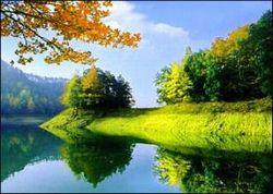 千岛湖国家森林公园